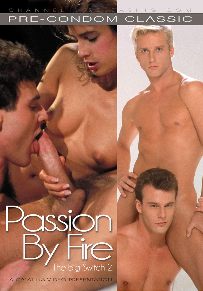 Passion By Fire (The Big Switch 2)